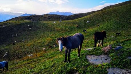 हिमाचल प्रदेश के खूबसूरत भुंतार की सैर