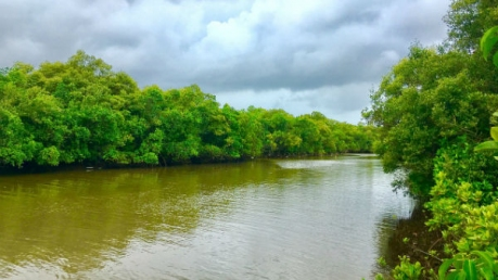 गोवा के तिस्वाडी के रहस्यमयी स्थल