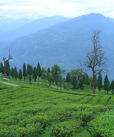 सिक्किम का स्वर्ग है रवंगला, ये स्थान बनाते हैं सबसे ज्यादा खास