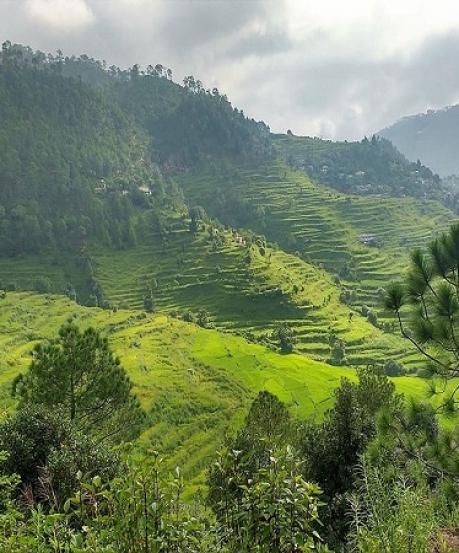 अद्भुत : 'बाघों की भूमि' कहलाया जाता है उत्तराखंड का यह पर्वतीय स्थल