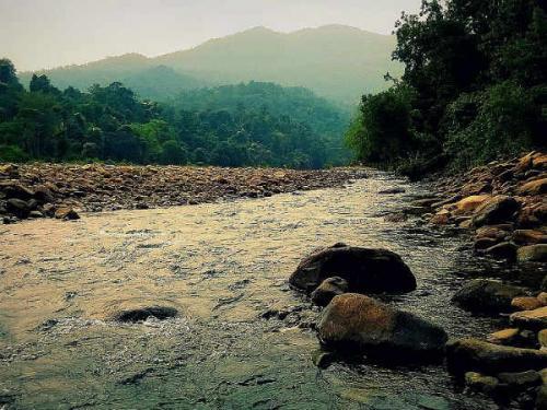 वन्य जीवन को करीब से देखने के लिए जरूर आएं ओडिशा के सिमलीपाल