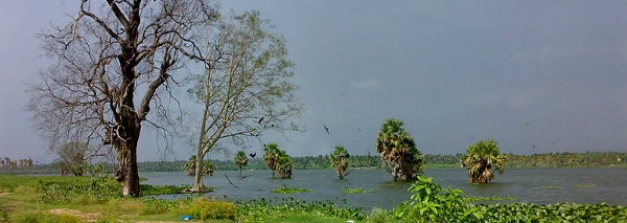 इरोड़ के खूबसूरत पर्यटन स्थलों की करें सैर
