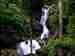 कर्नाटक के प्राकृतिक खजानों में से एक इरपु जलप्रपात, जानिए क्यों है खास