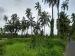 गोवा के मारगांव की सैर